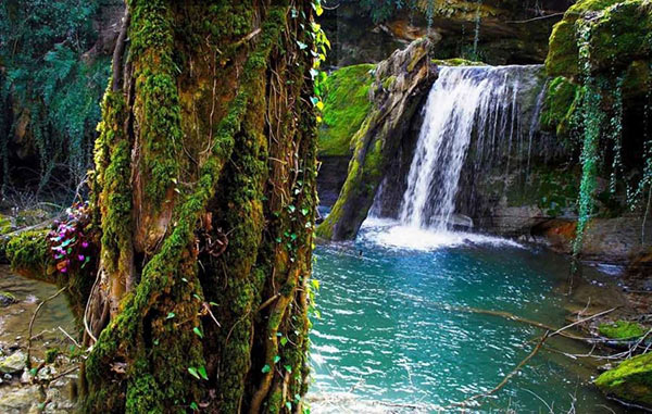 جاذبه های طبیعی شیراز